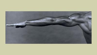 Robert Mapplethorpe. La perfezione della forma - Immagini © Robert Mapplethorpe Foundation