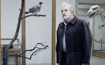 un-piccione-seduto-riflette-sull-esistenza-film-svedese